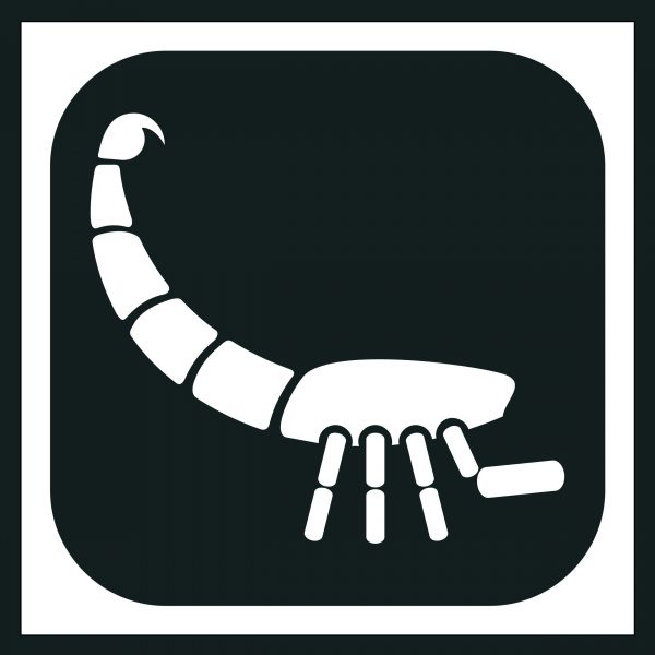 Skorpioni 24.10-22.11
